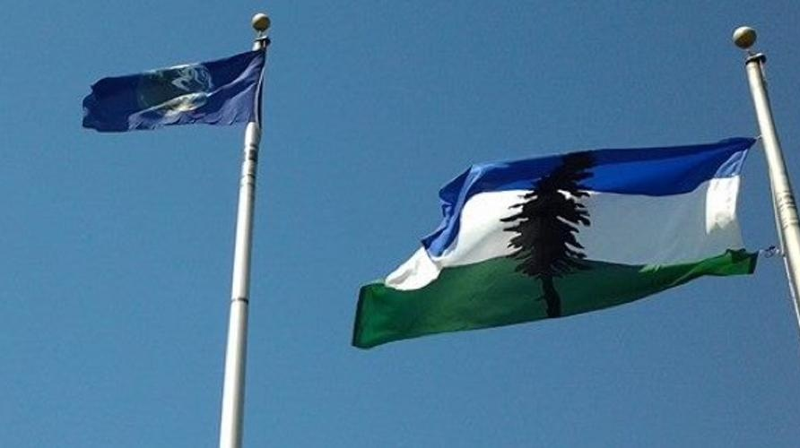 Cascadia Flag flying at ShellNO Protests