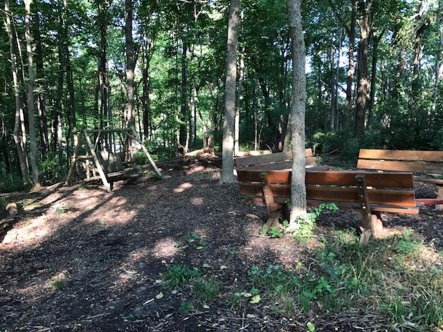 trail 11.jpg
