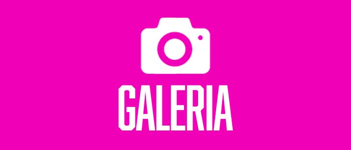 BOTON_galeria_2.png