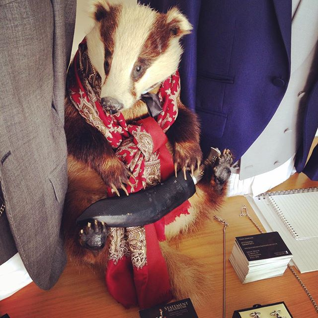 Found this little fella hiding in the #menswear @statementmenswear #altwedfair @quirkywed #badger #scarf