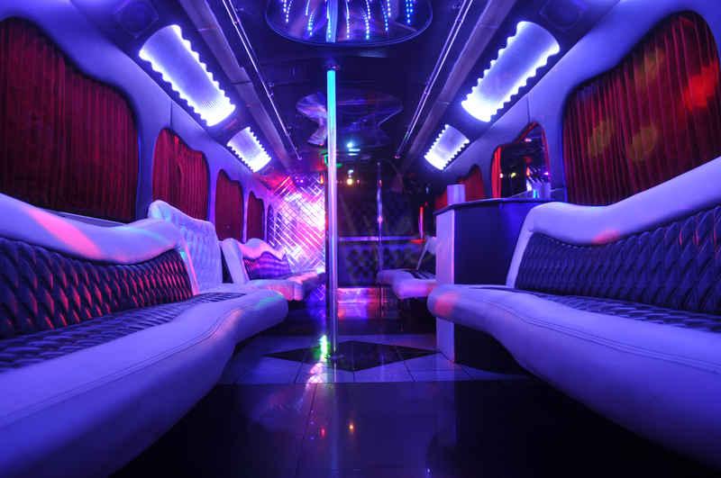Alive Party Bus 47 Passenger