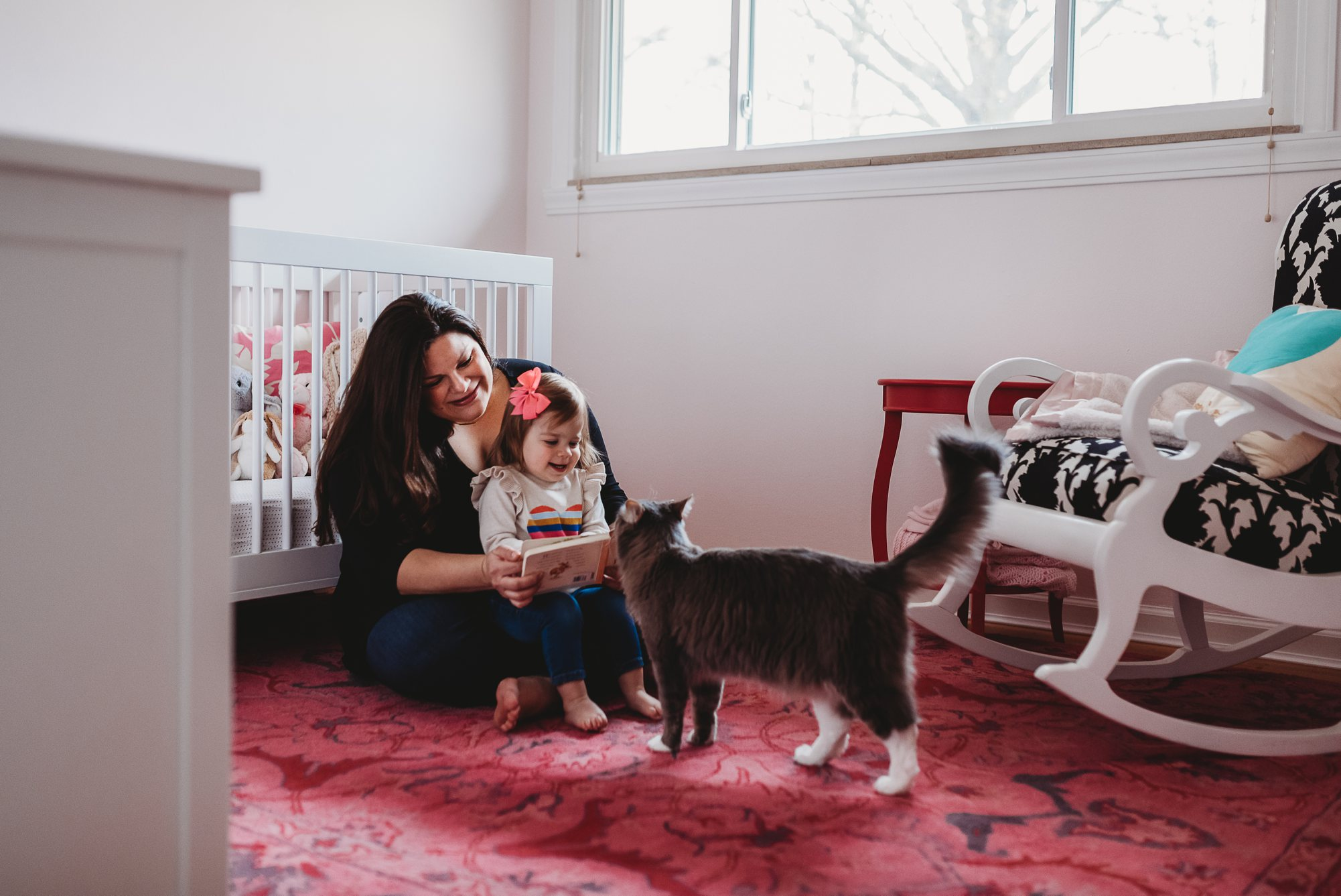 cat with family-st louis photographer