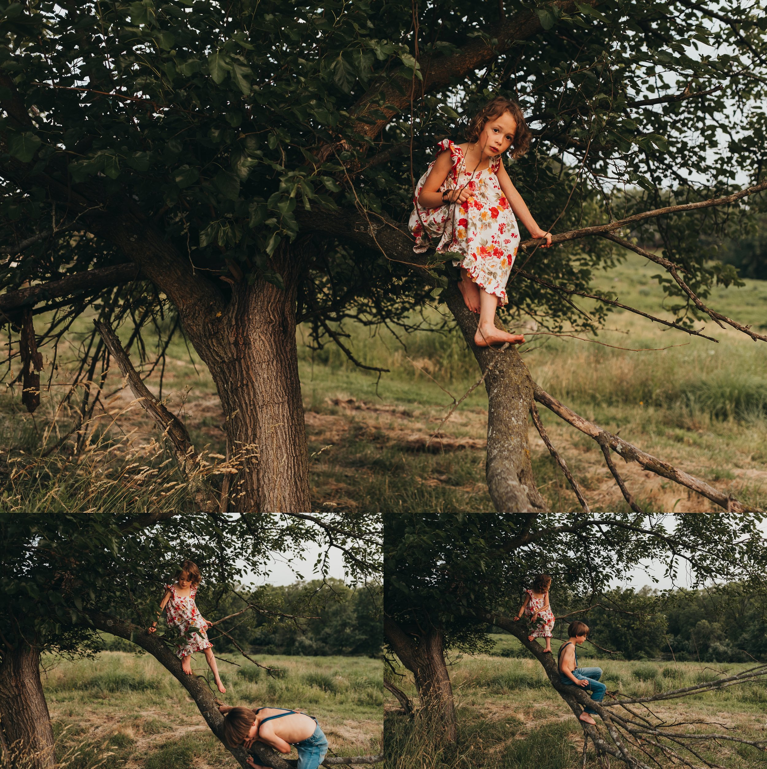 Climbing-trees-St-Louis-Photographer