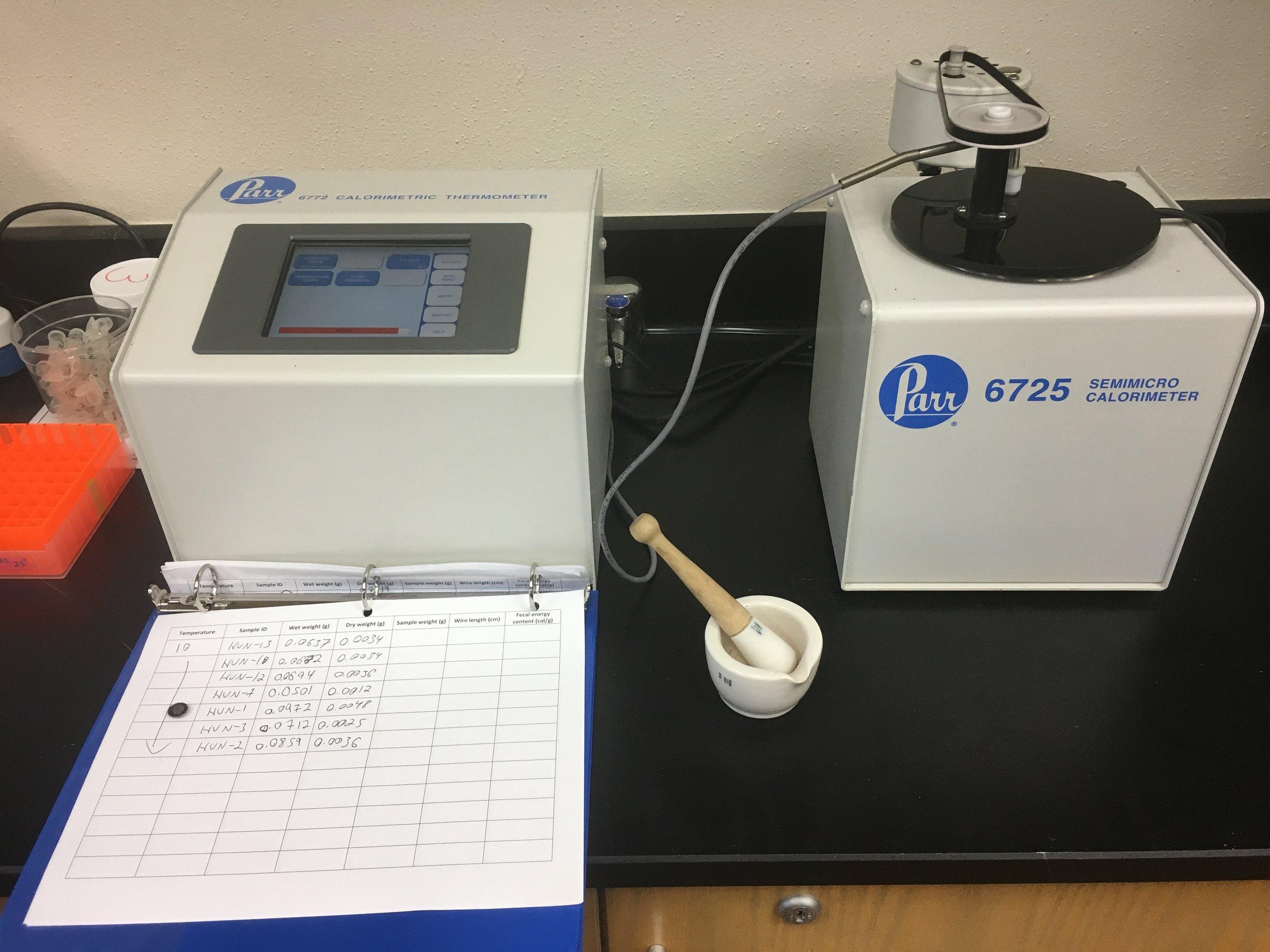 watson lab, midwestern state university -