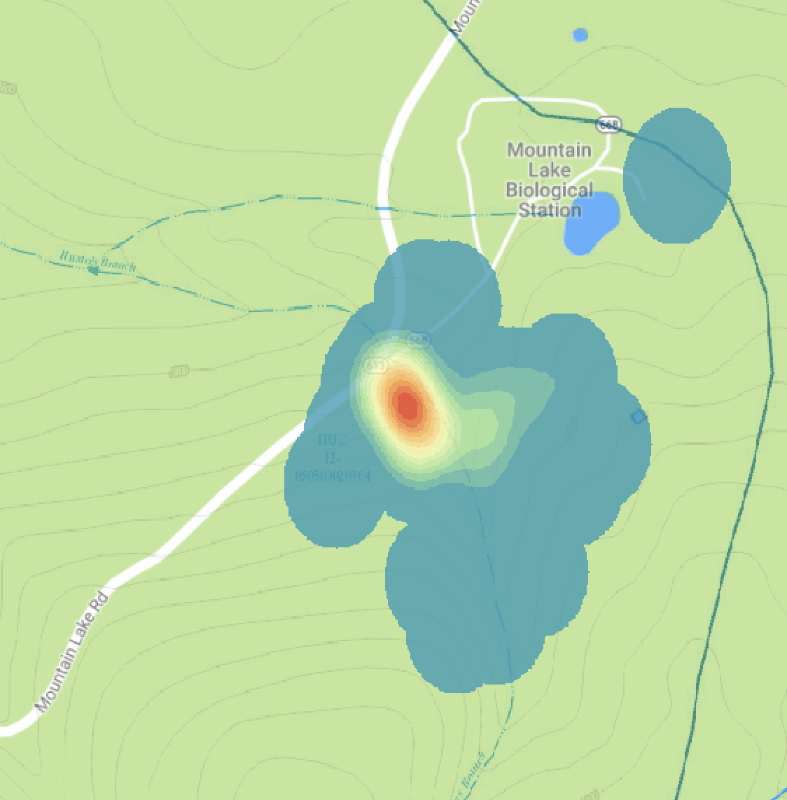 Spatial ecology - In 2016, we recorded the location of 101 P. montanus and 38 P. glutinosus at MLBS. We marked each individual to make sure that we didn't observe the same individual more than once. The heat map to the right shows occurrences of P. montanus, with red indicating areas of greatest density and blue indicating areas of lowest density. As of now, I don't have any plans for this data. If you're interested in this system and would like to run some spatial analyses, get in touch!