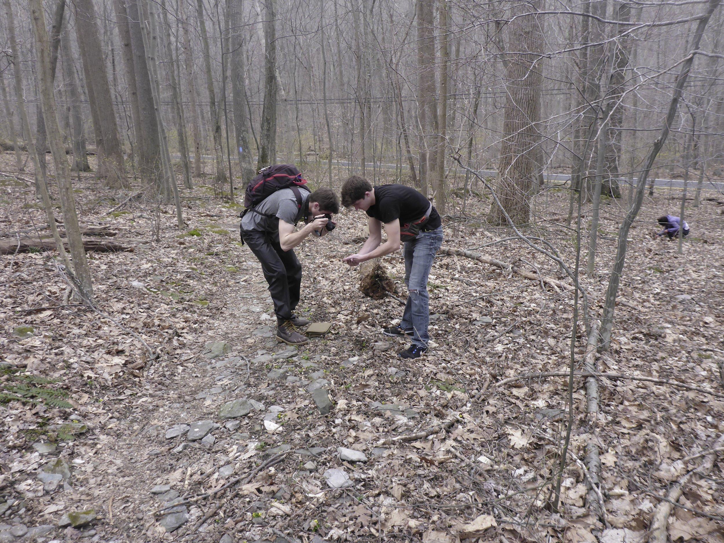 Matt and Ben finding salamanders