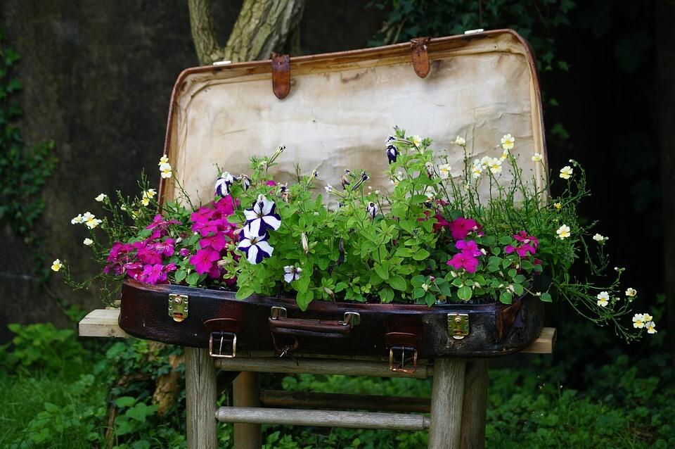Vintage Suitcase - Flowers in a vintage suitcase is for the more artistic landscaper wanting to show off their creativity to all the neighbors.