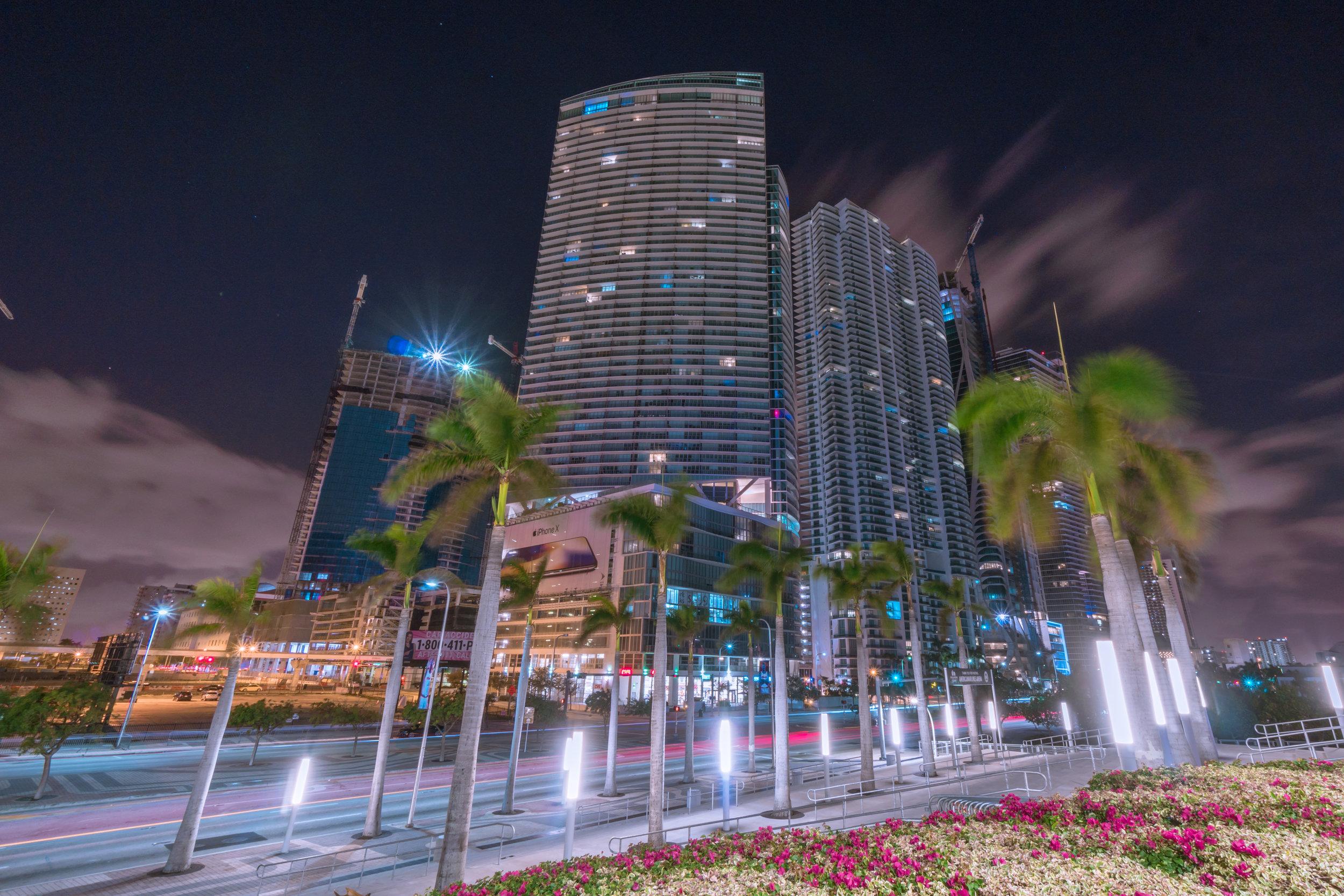 downtown - palm long expo_.jpg