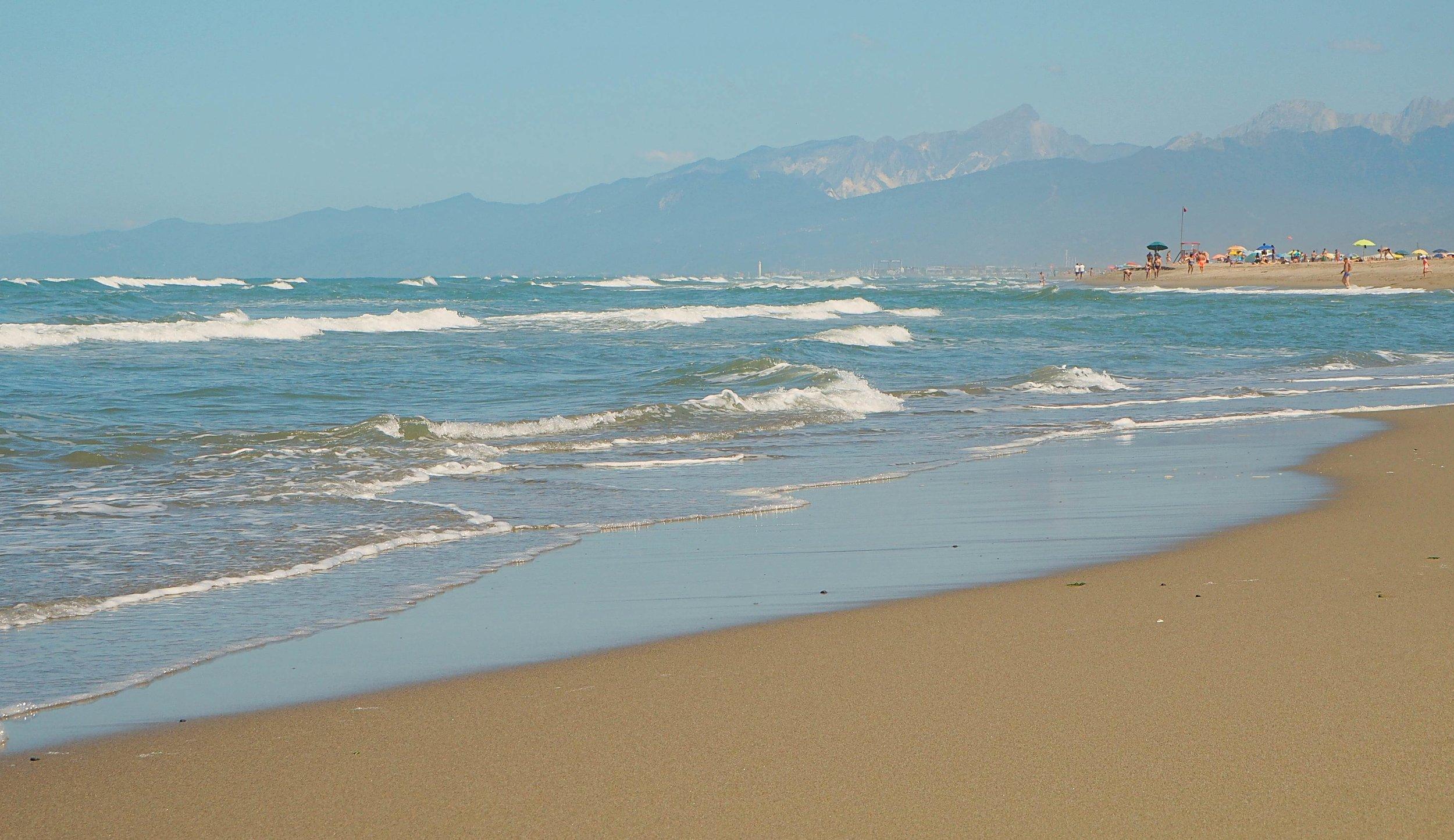 Beach in close to Pisa: WWF Dune Tirrenia