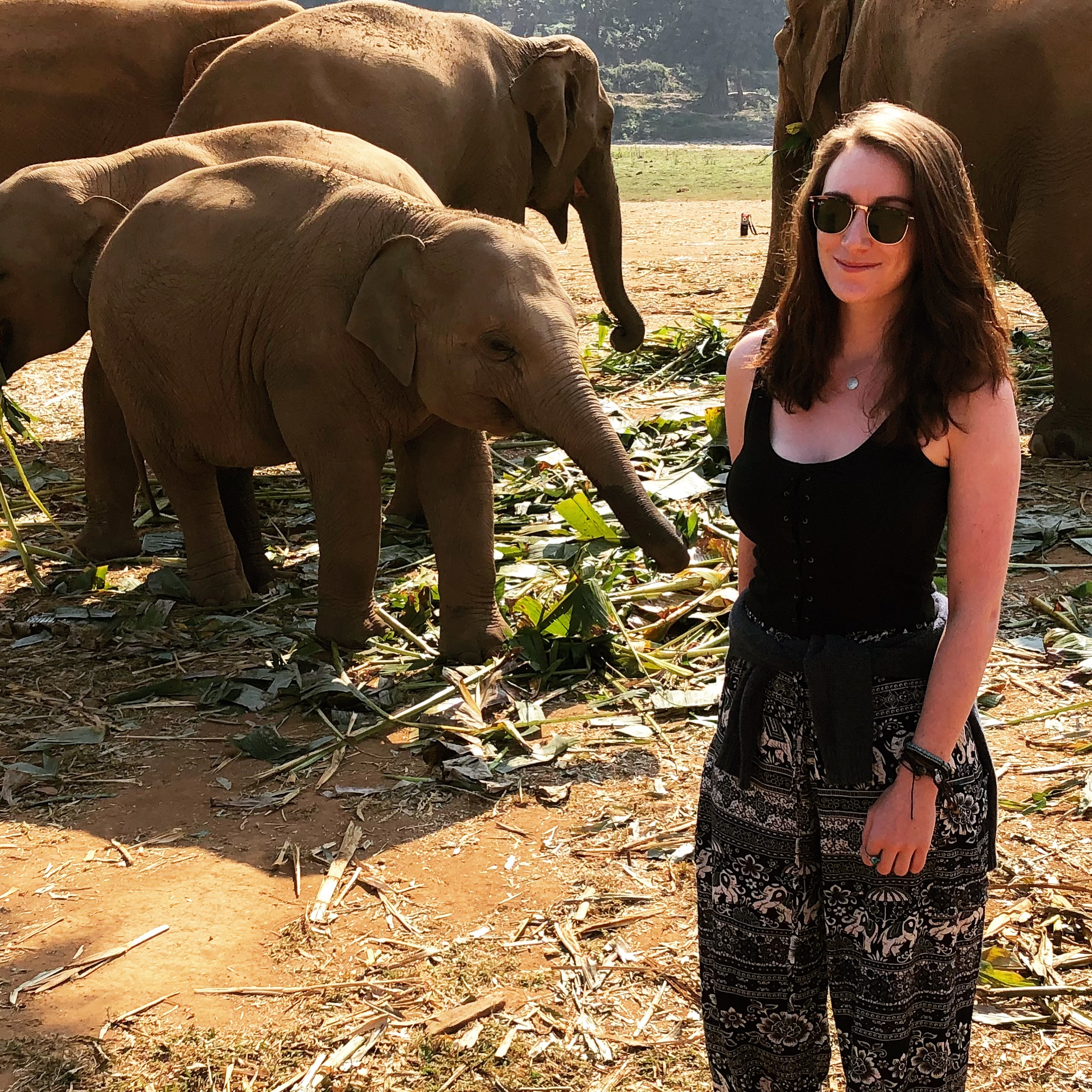 Embracing the no-bra-life at the elephant park: traveling with big boobs