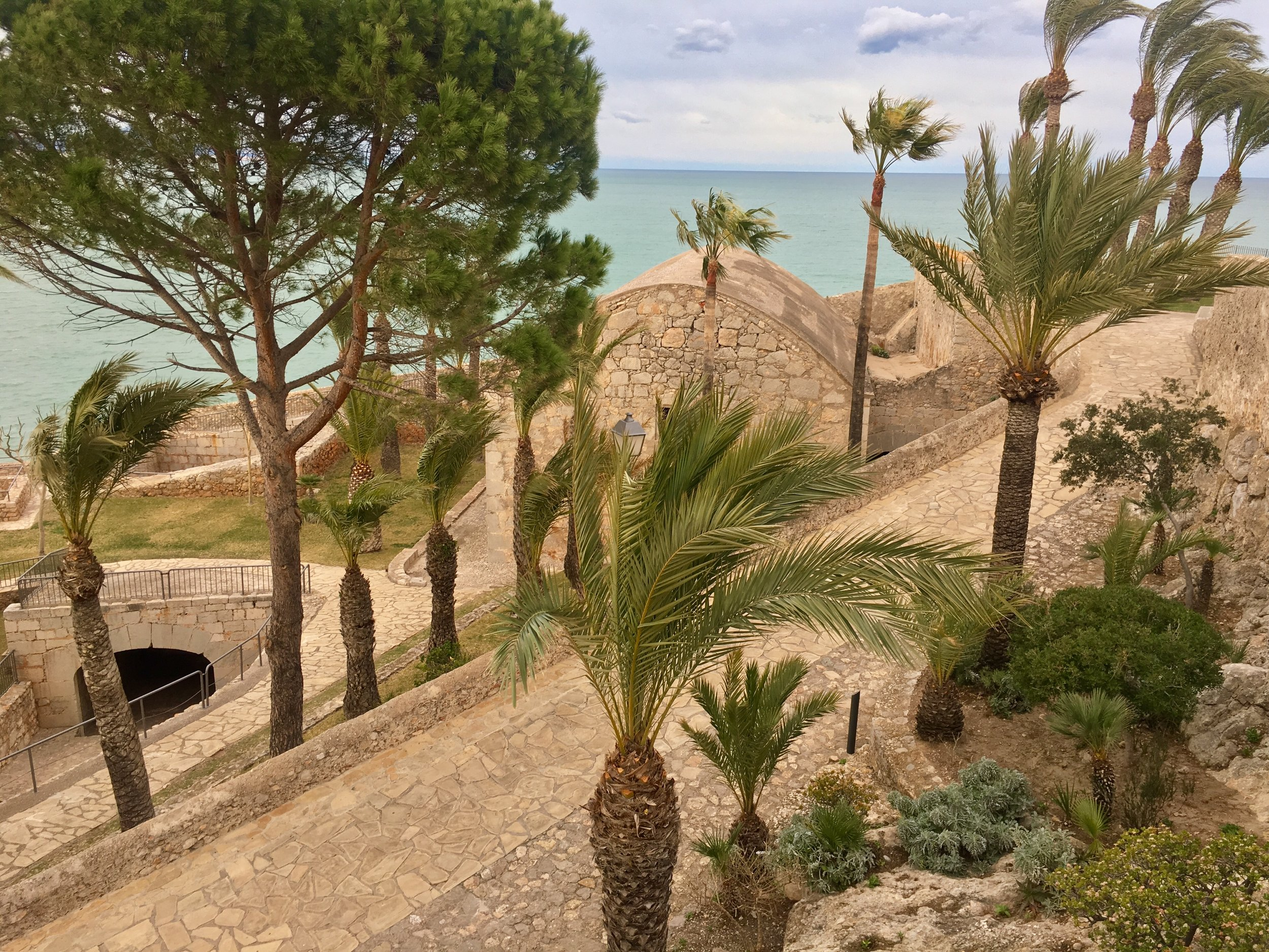 Overlooking the breezy palm trees in Parc d'Artilleria,Peñíscola's resident garden.