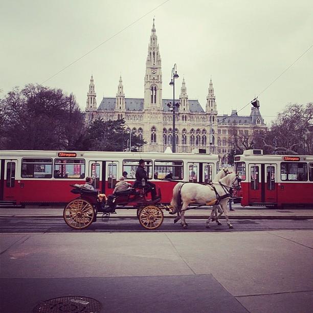 Ringstraße Tram - Picture by jinibangi via Instagram
