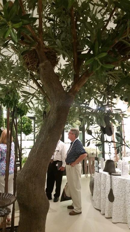 TPT 8900- Olive Tree