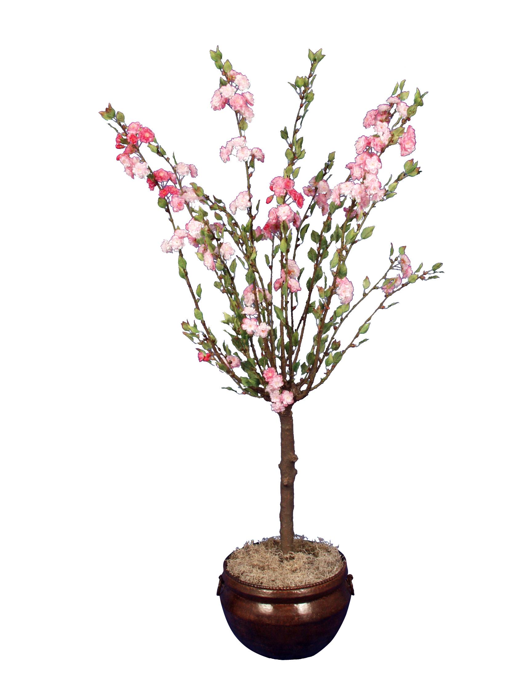 TSP 5140- Cherry Blossom