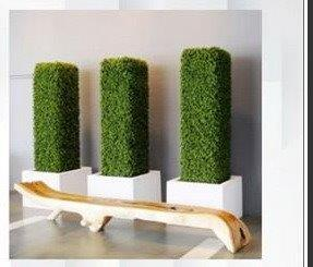 Triple Boxwood photoshoot