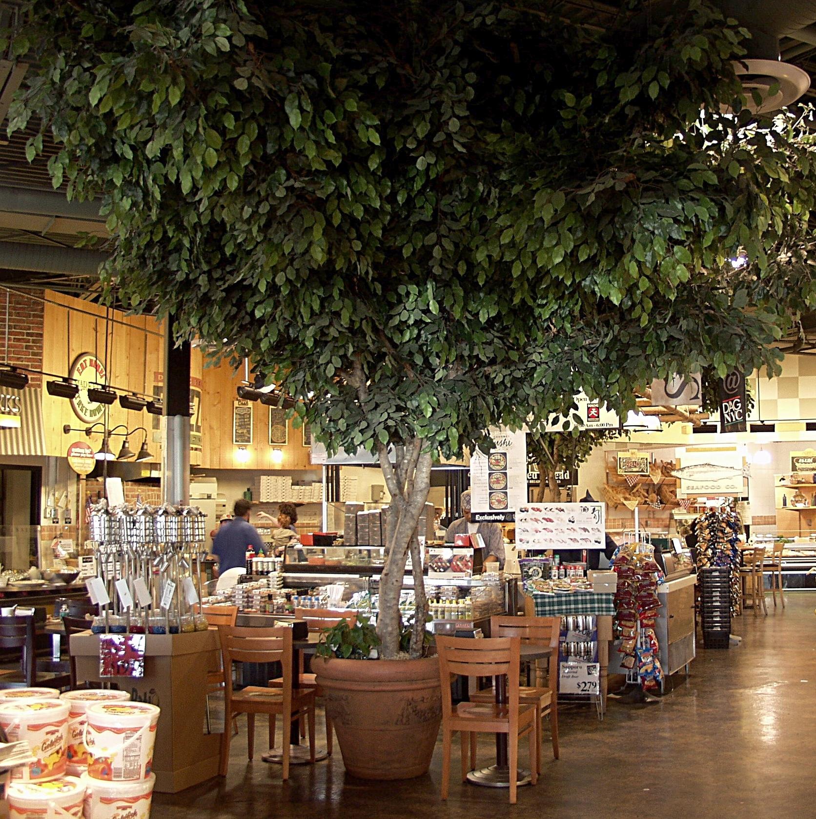 D'agostinos Supermarket Ryebrook NY