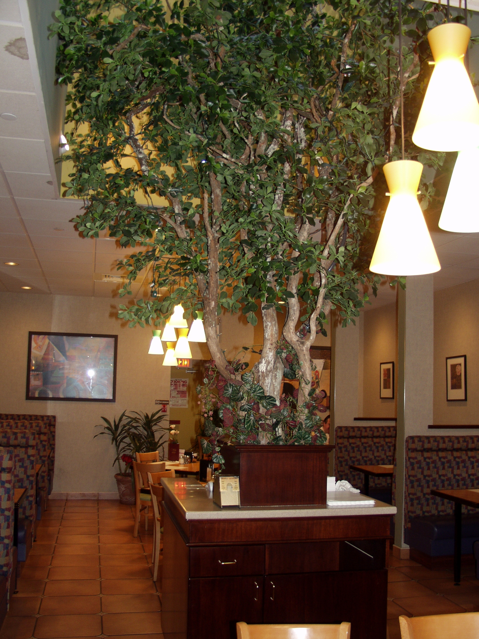 Large Artificial Trees for Indoor and Outdoor — SILK TREES