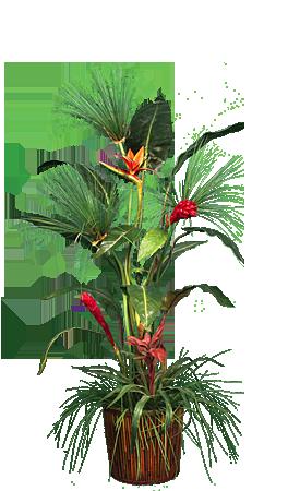 PL091 Palm Garden
