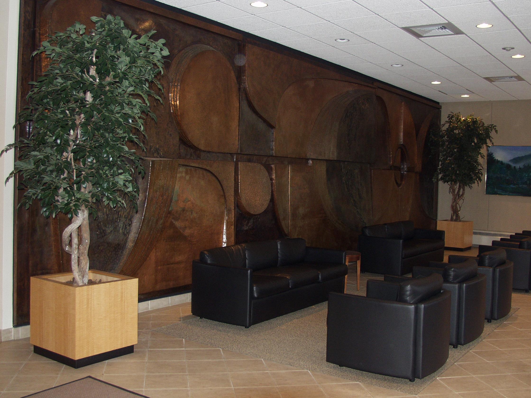 TCM 0021- Ficus Tree