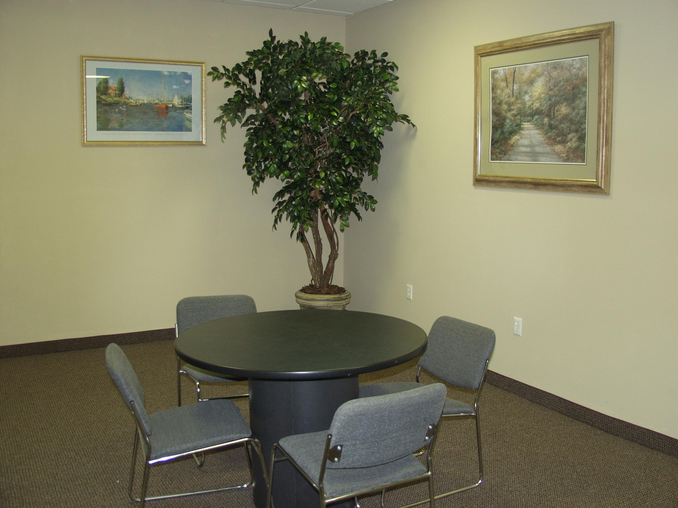 TCM 3920- Sacagi Ficus