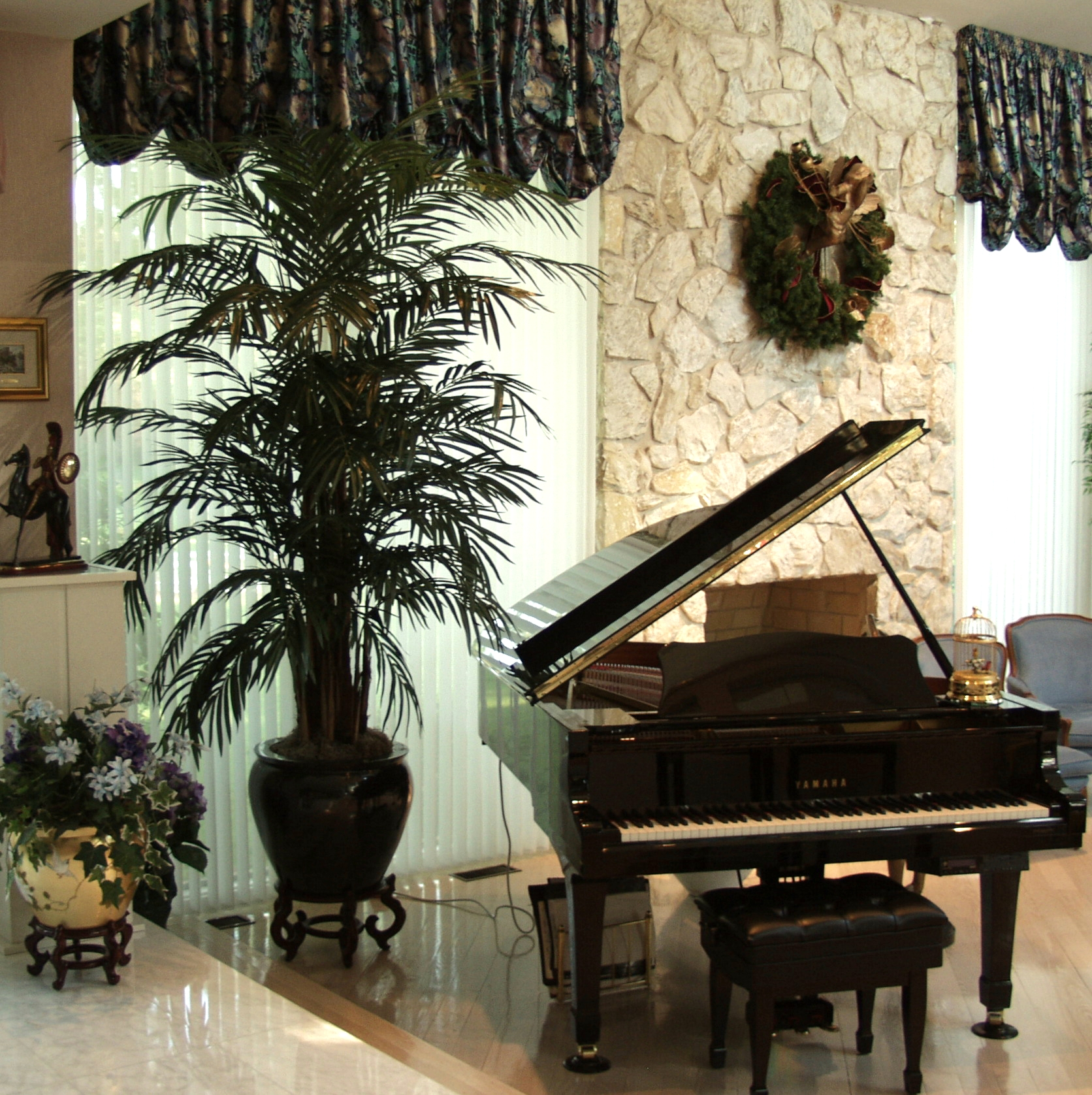 PL490 Areca Palm
