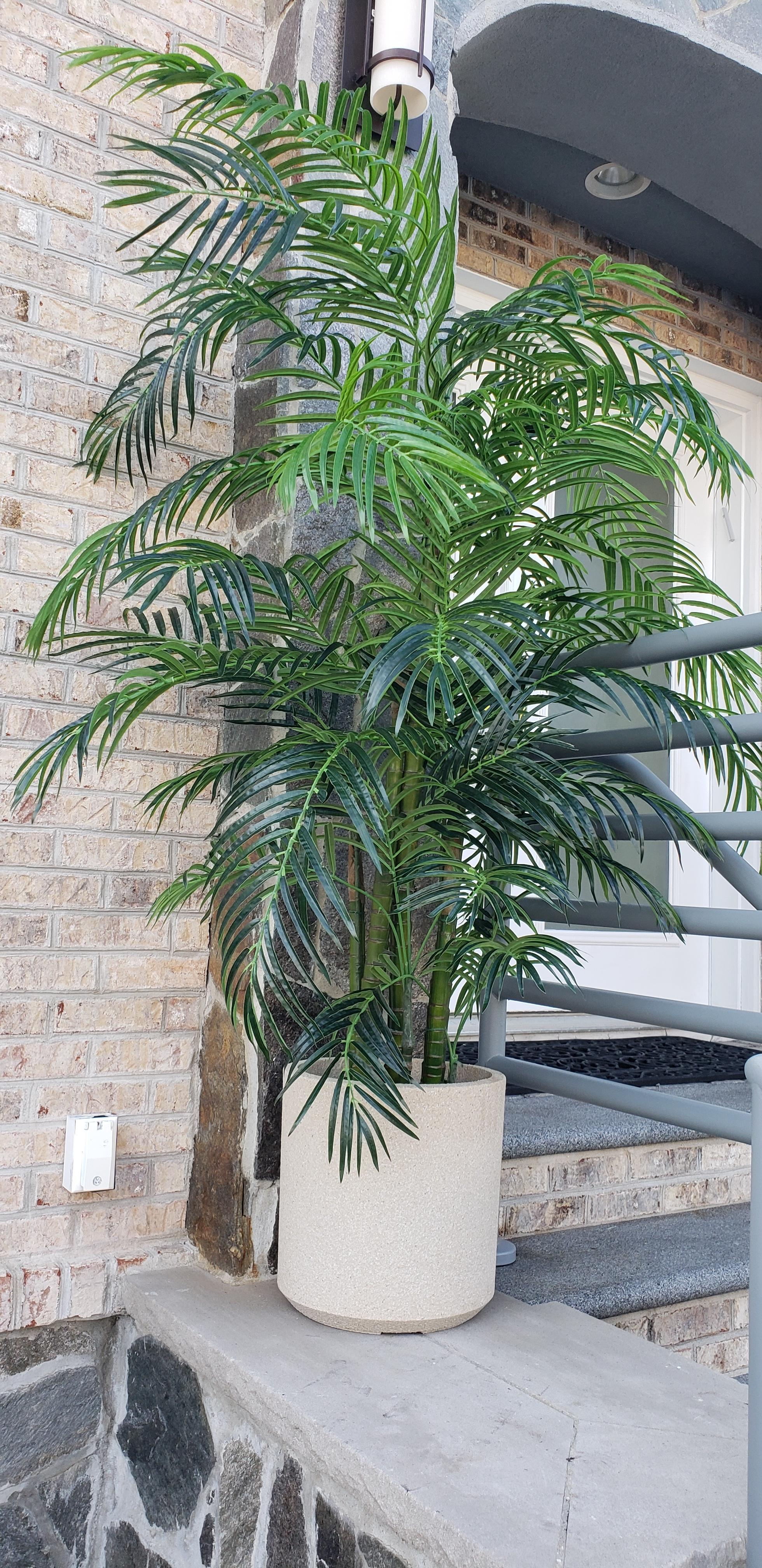 UV Outdoor Areca Palm