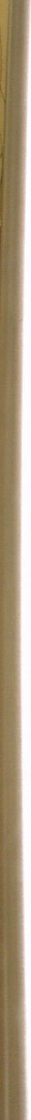 gold column.jpg