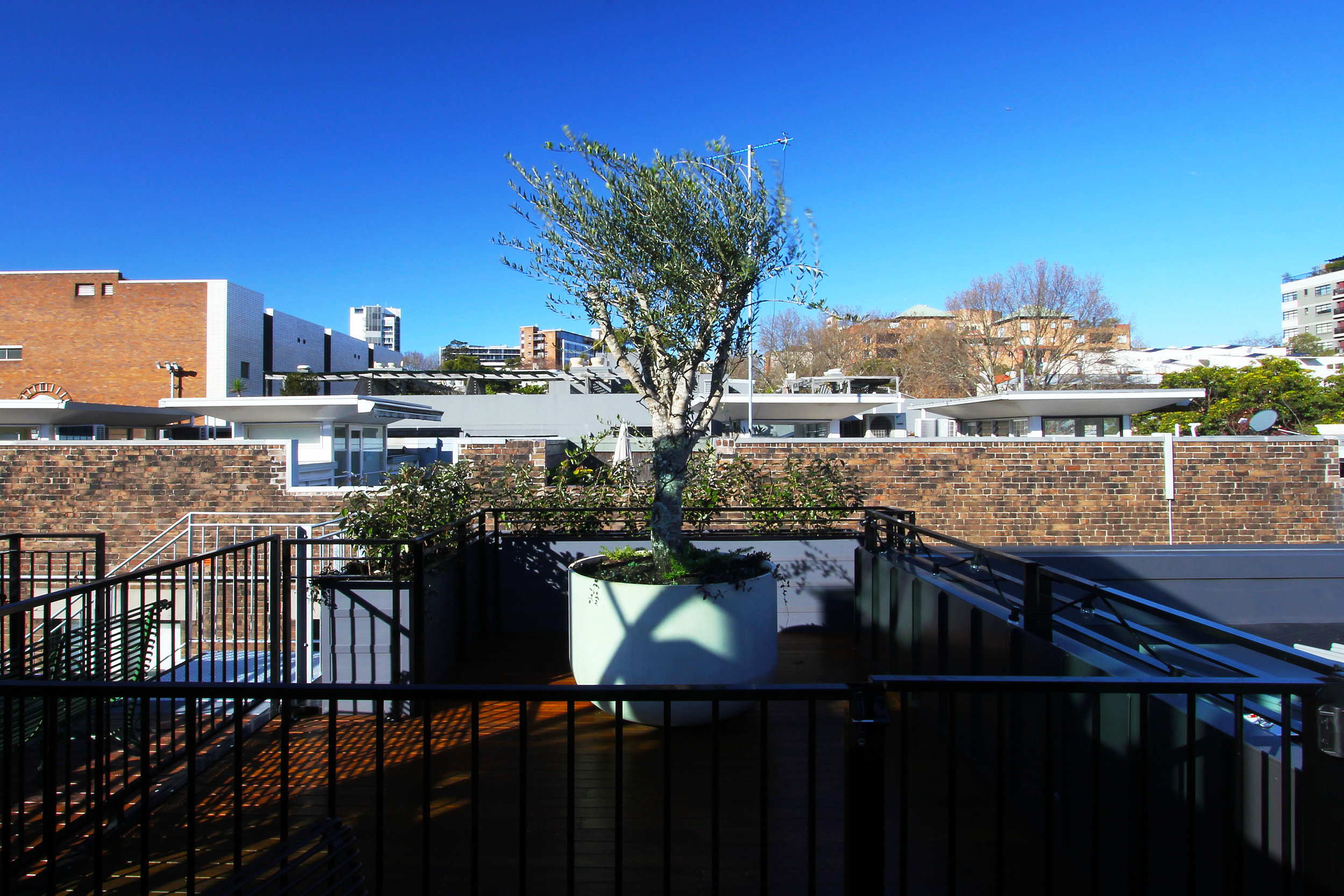 TYA Photography | Little Albion Guest House | Secret Rooftop Garden | Winter | Arvo 01 | A7626.jpg