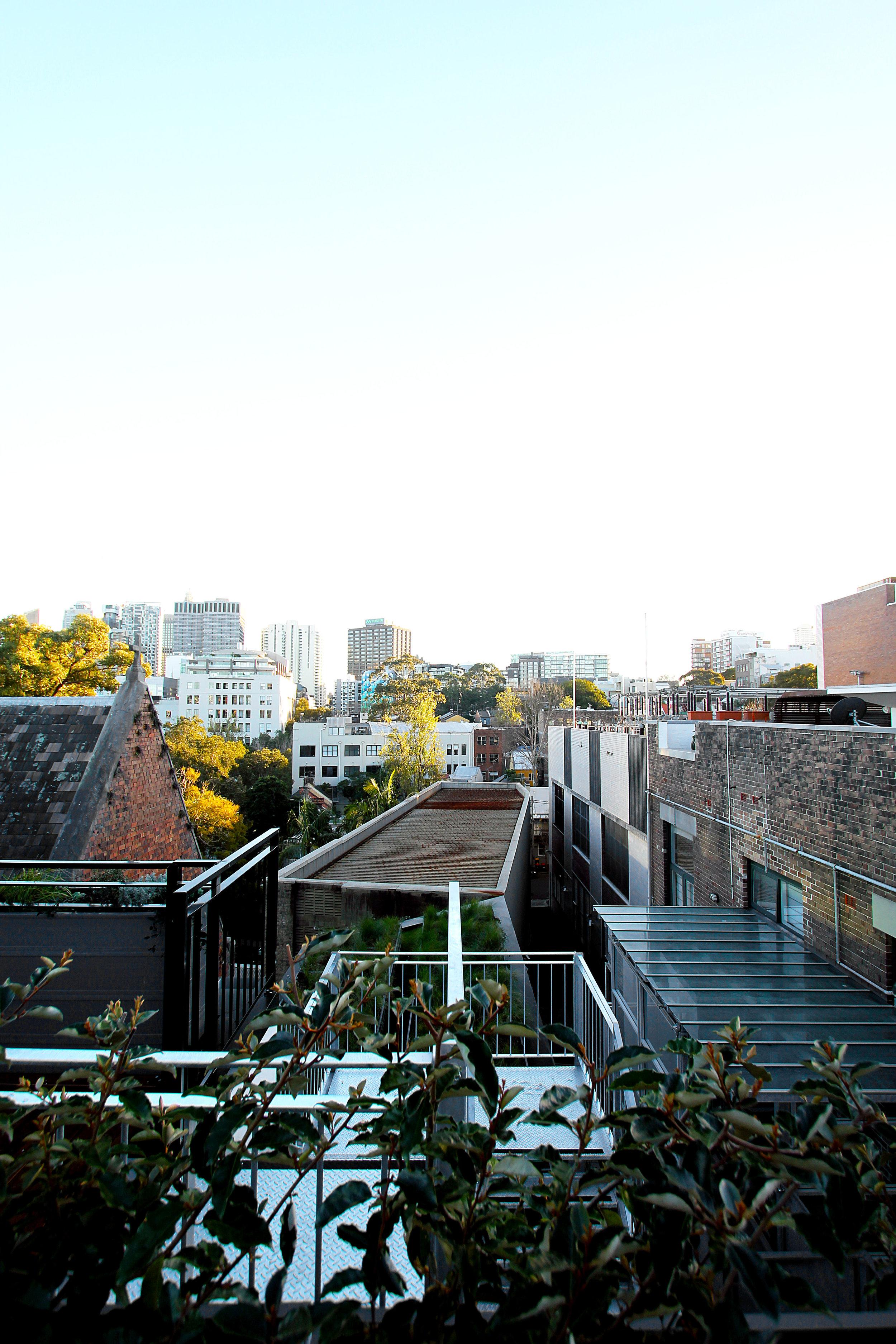 TYA Photography | Little Albion Guest House | Secret Rooftop Garden | Winter | Morning 02 | A9773.jpg