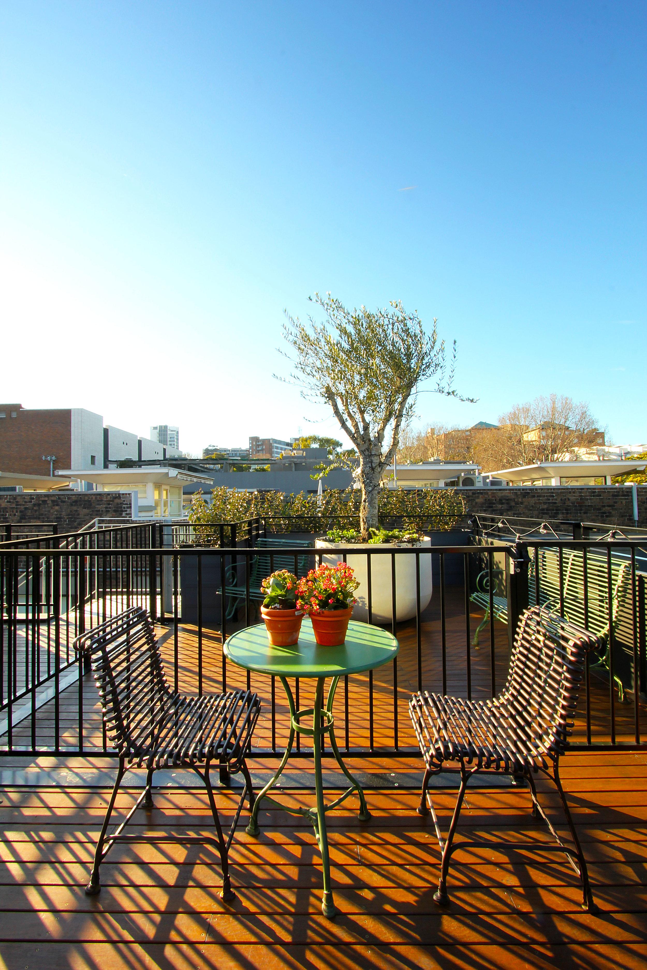 TYA Photography | Little Albion Guest House | Secret Rooftop Garden | Winter | Morning 01 | A9723.jpg