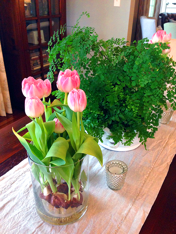 Tulips and Fern