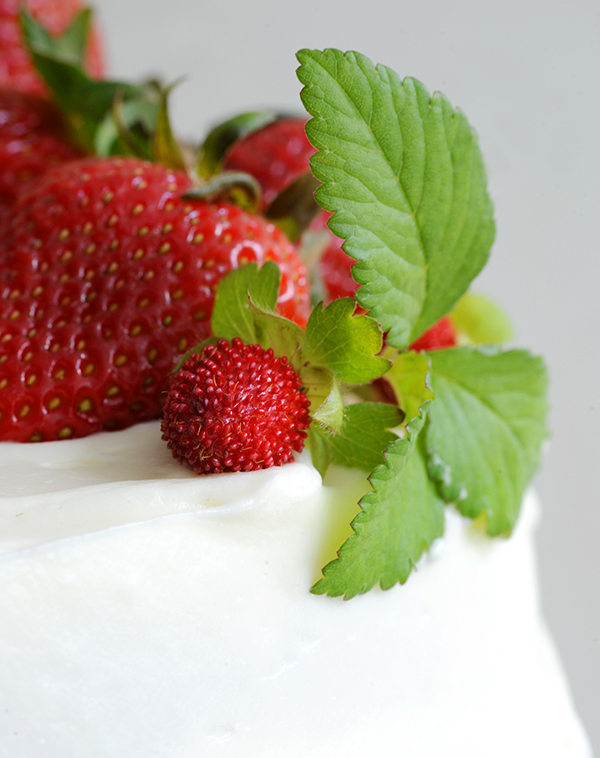 Strawberry Shortcake Cake-6672