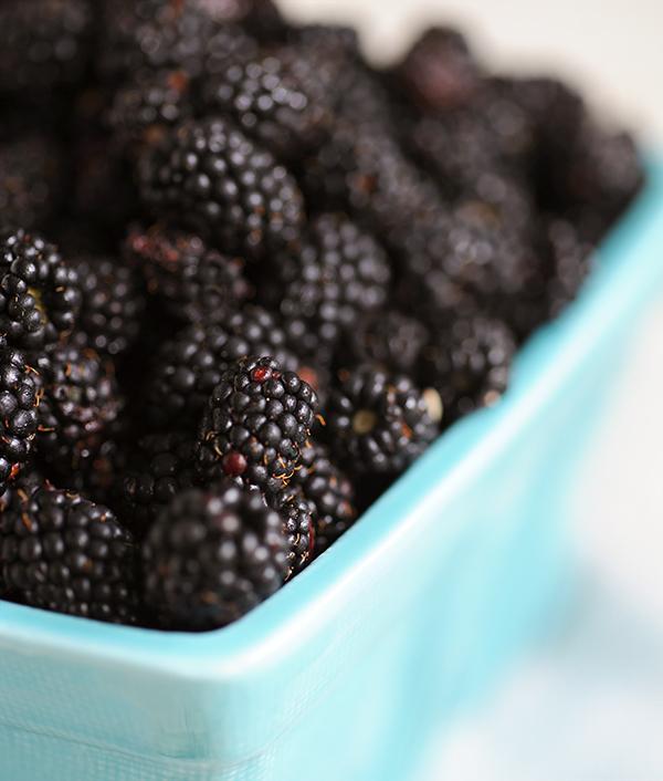 Blackberries-7554