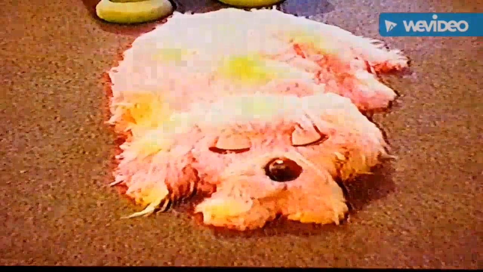 Blobby Dog.png