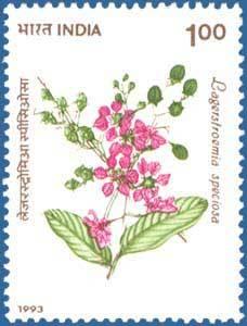 stamp1.jpg