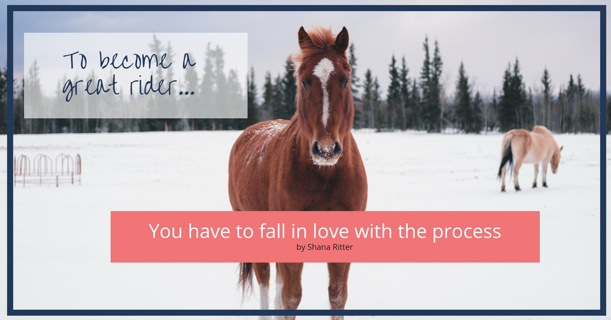 049- You have to fall in love with the process.png
