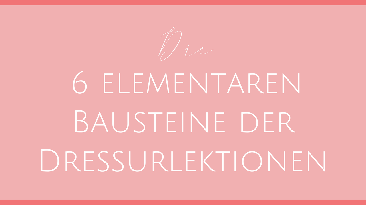 Die 6 elementaren Bausteine der Dressurlektionen.png