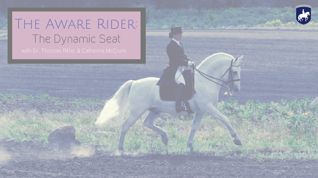 The Aware Rider_ The Dynamic Seat .png