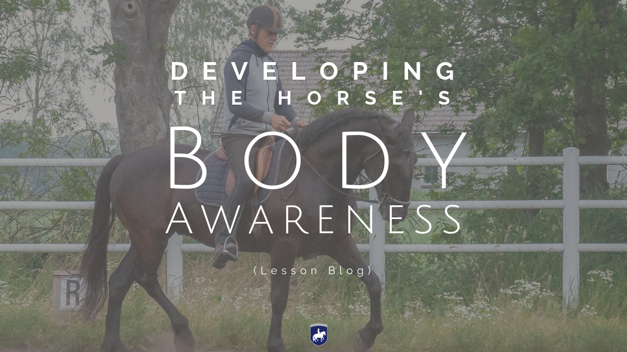 069a Developing the horse's body awareness.png