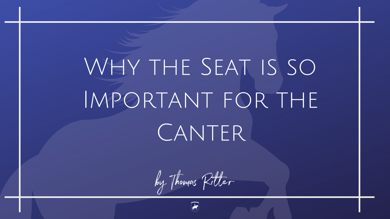 Why the Seat is so Important for the Canter.png