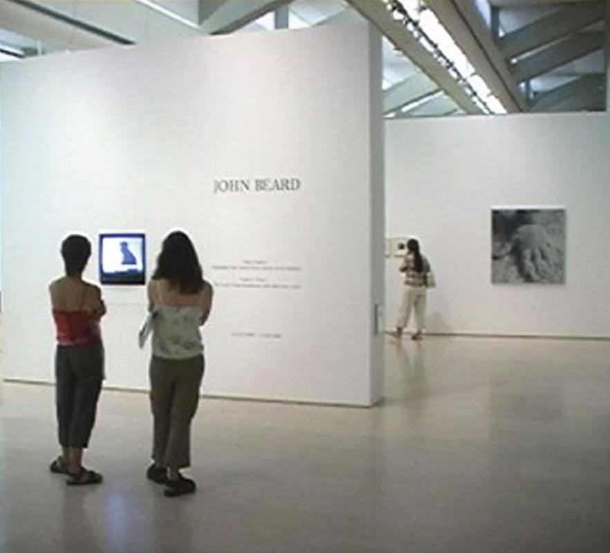 Visao Fugitivo    Centro de Arts Moderna, Calouste Gulbenkian Museo, Lisbon. 2005-06  Curated by Ana Vasconcelos