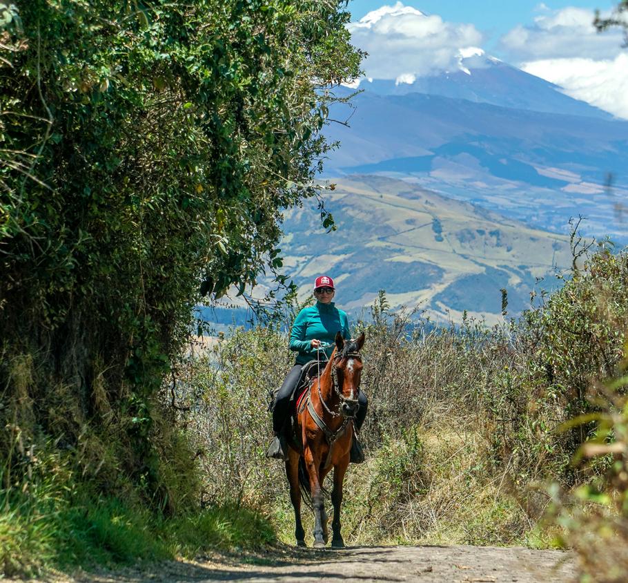 horseback-01.jpg