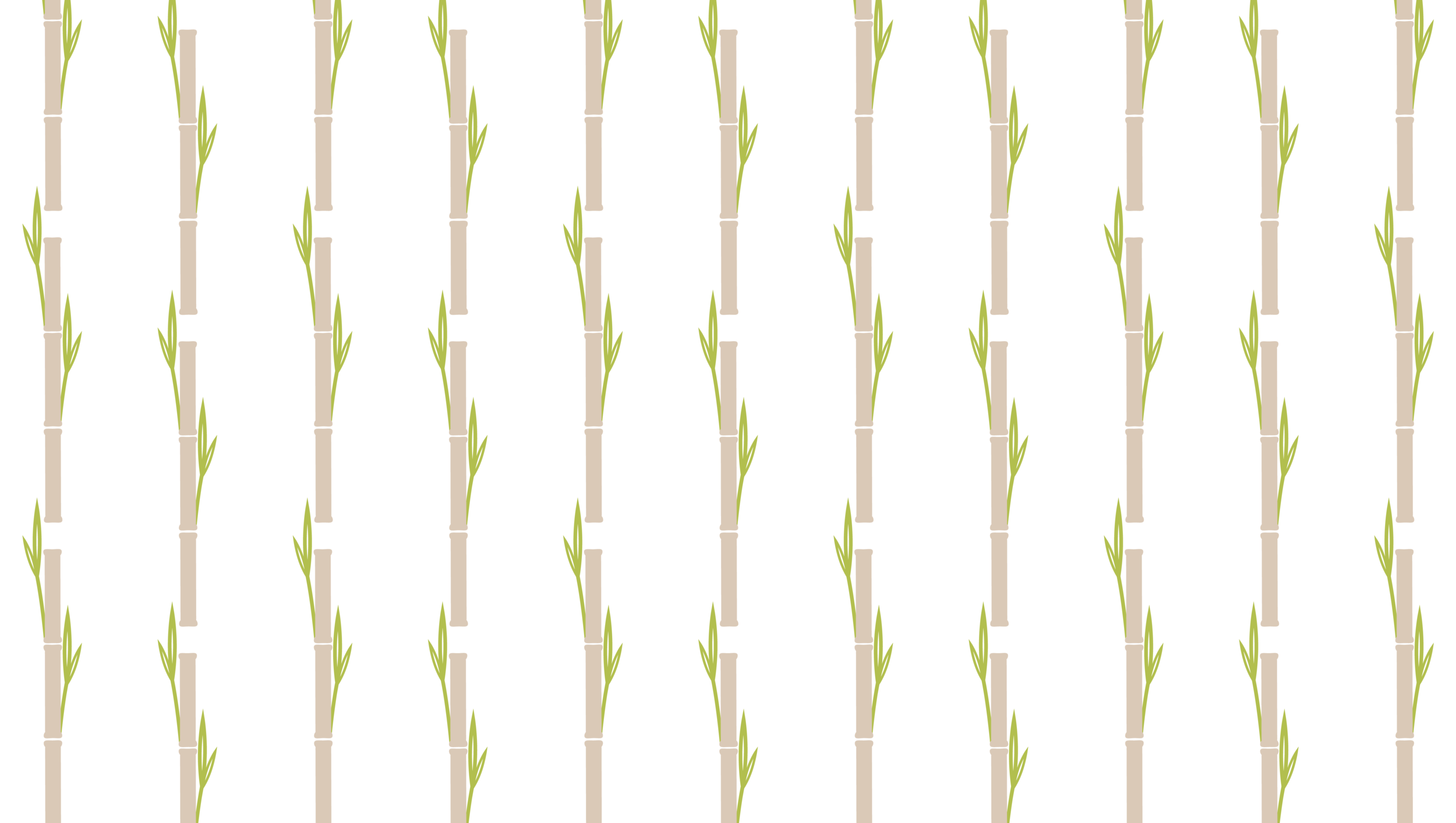 bamboo files-02.png