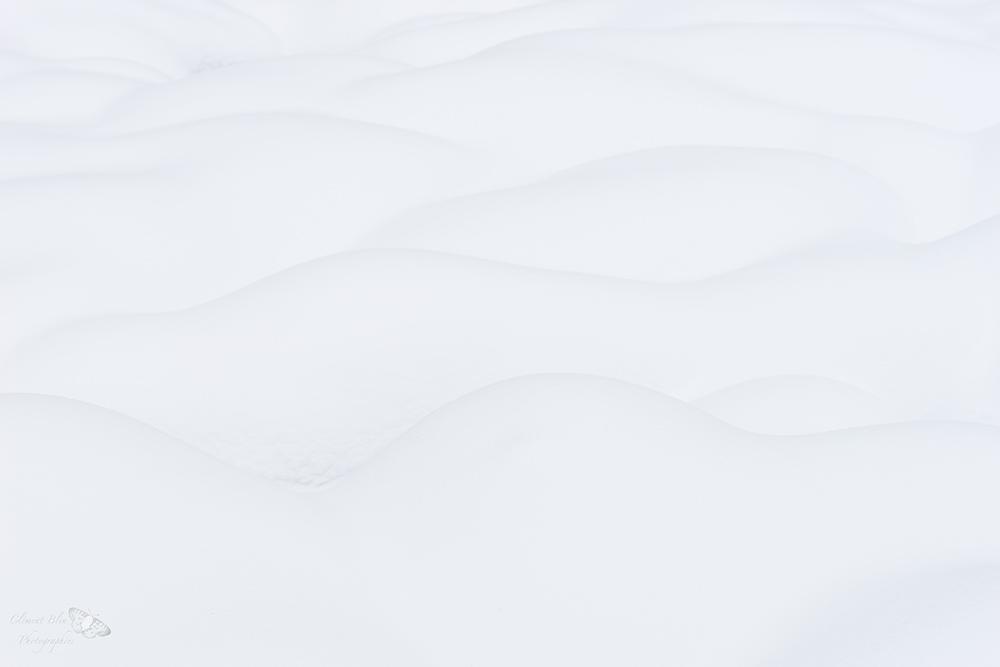 Tourbière et neige à Bellefontaine