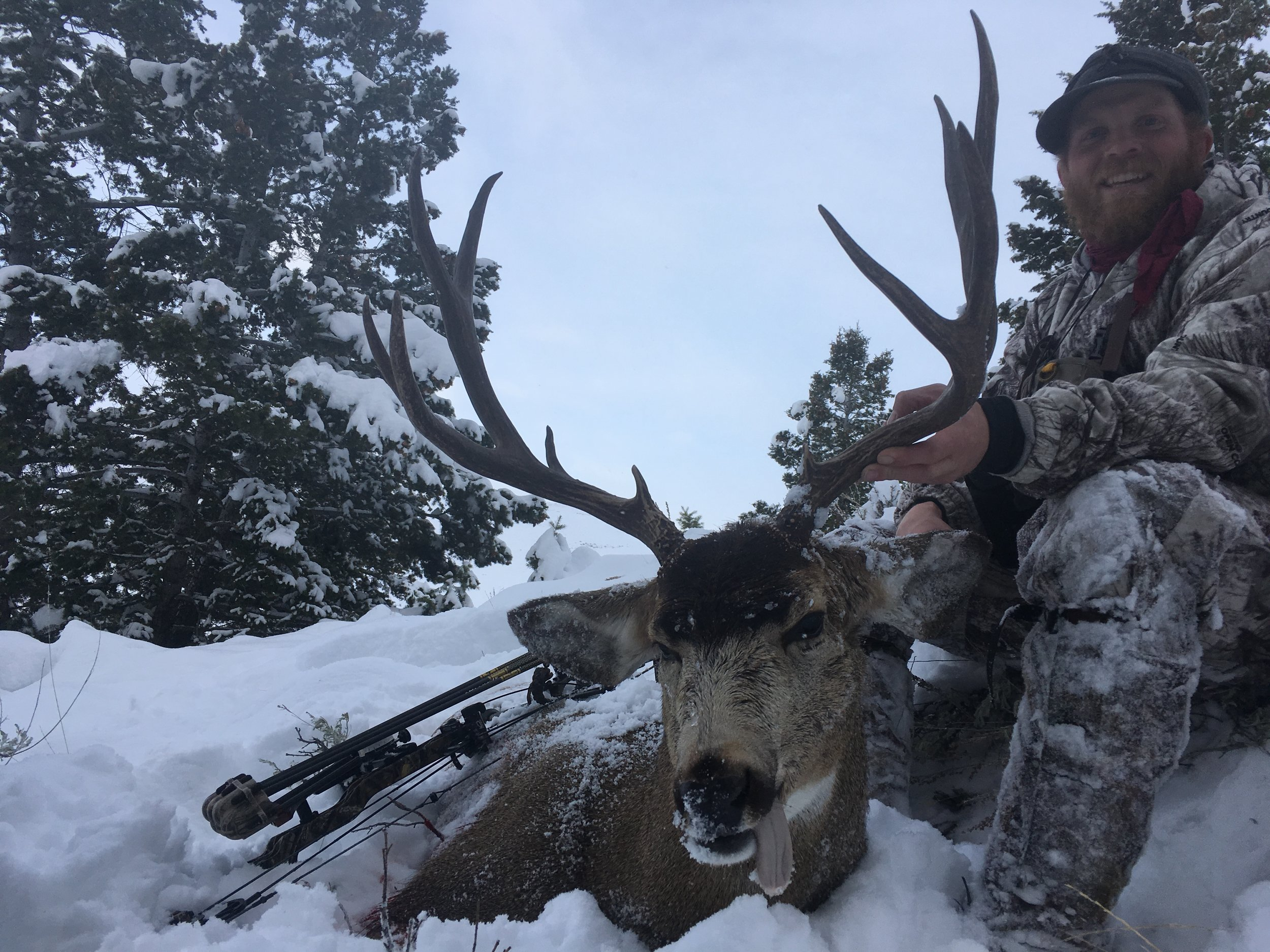 Idaho Mule Deer Chase Burns