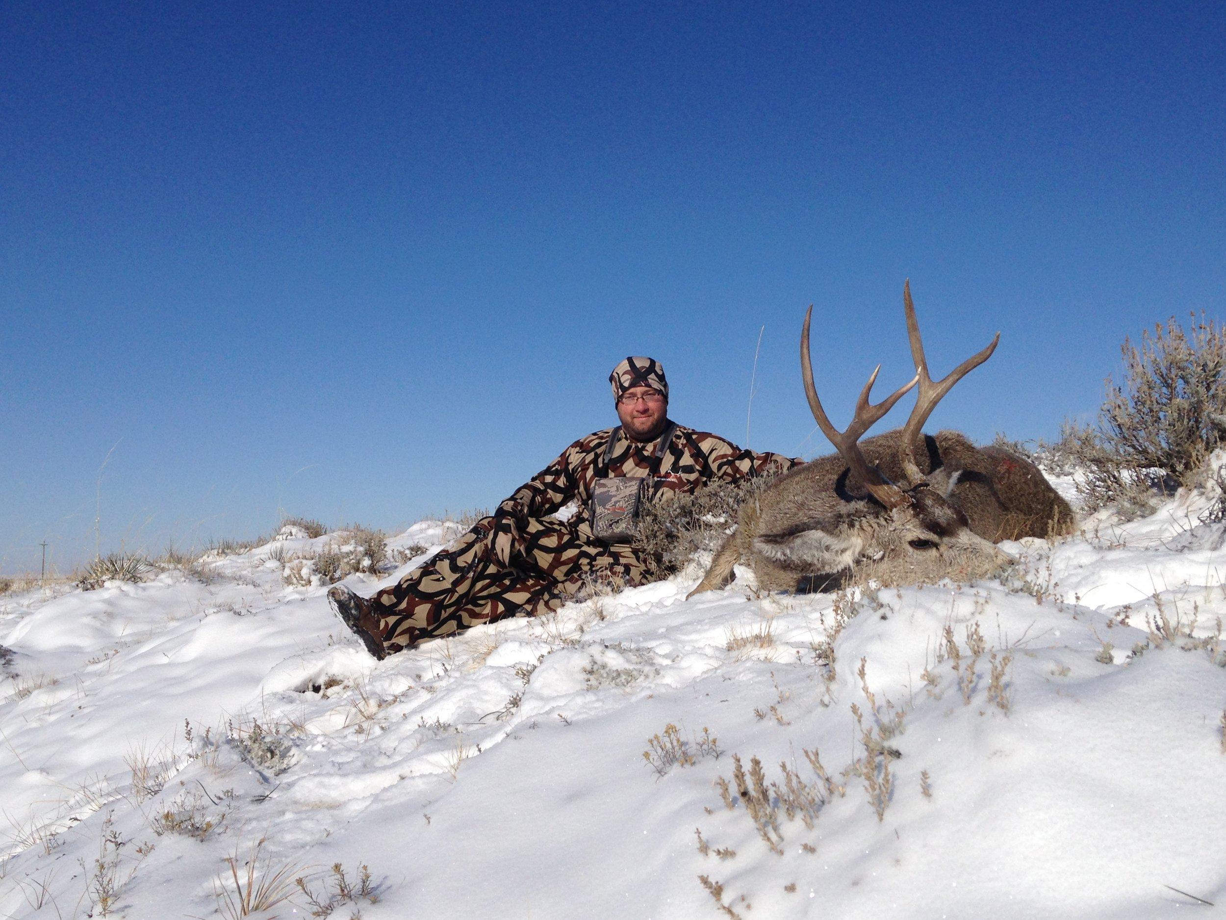 Montana Mule Deer Greg Misner