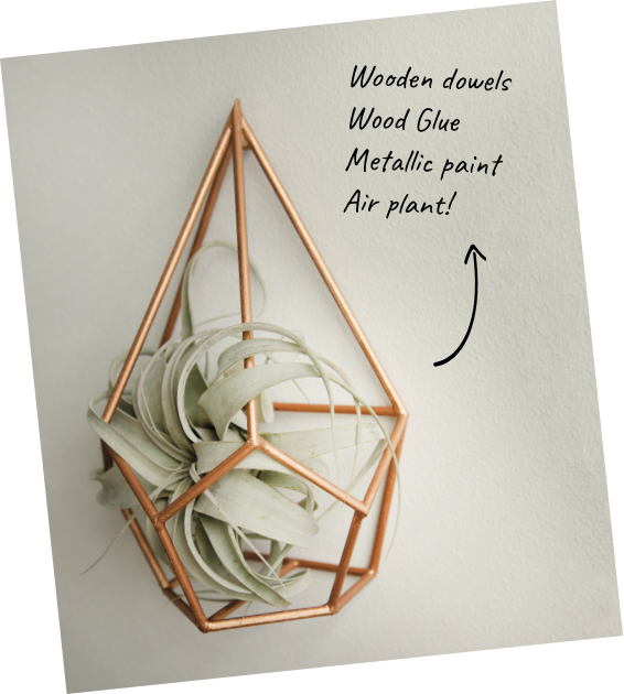 Tommy Art geometric air plant holder using Gold Metallic Paint