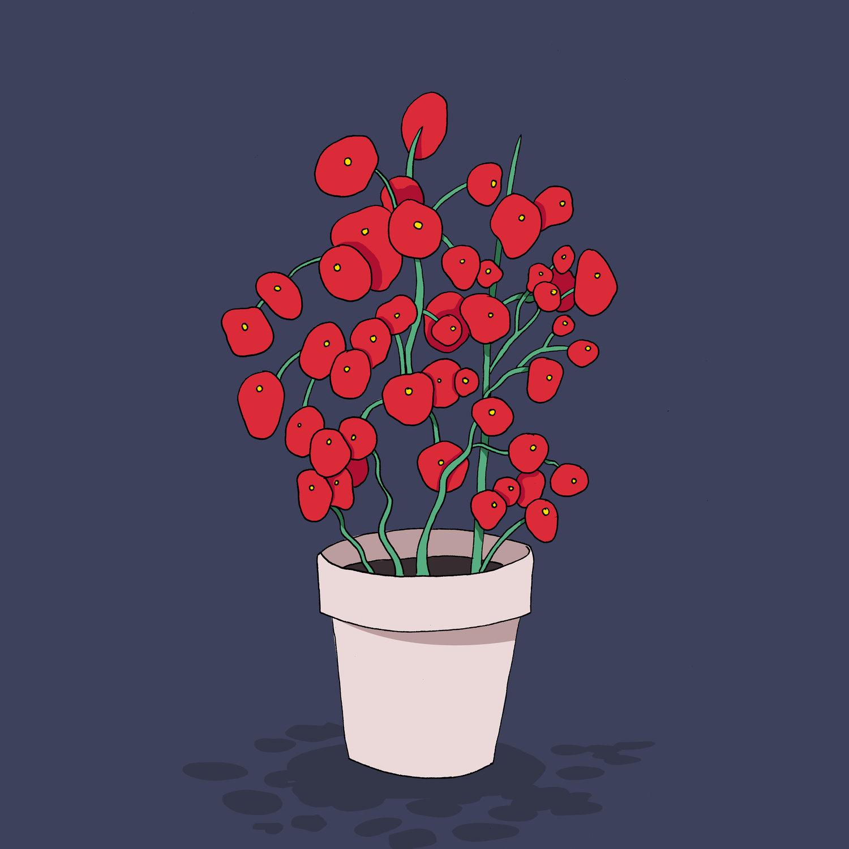 plant_RGB.jpg