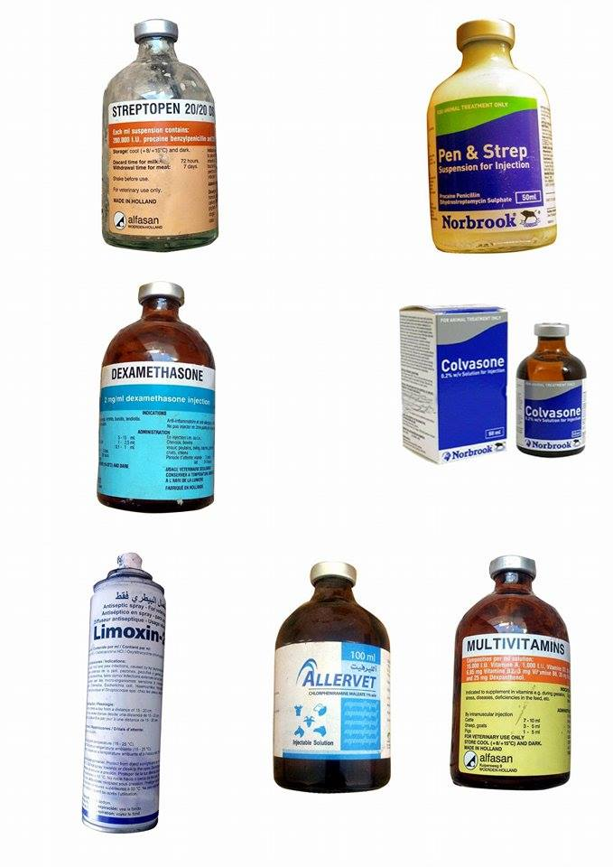 medical needs for horses at police academy 27 dec vet dr Moath's prescription.jpg