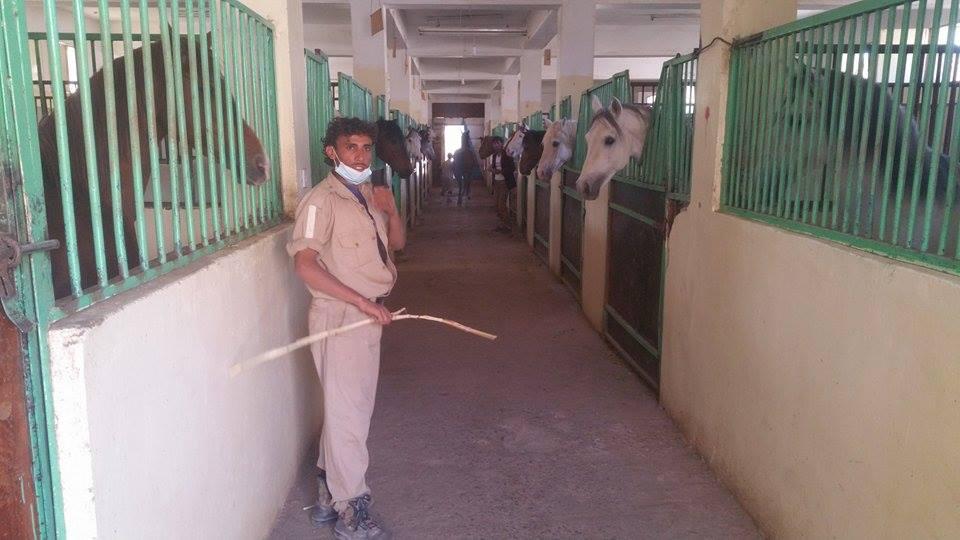 Day 2 The Police Academy Sana'a Rescue kim's photos dr Khaled Al waqa 8th Jan 2017.jpg